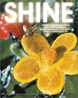 Shine: Wishful Fantasies and Visions of the Future in Contemporary Art
