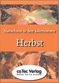 Naturfotos in den Jahreszeiten - Herbst, CD-ROM Pentium PC, mind. Win 9x